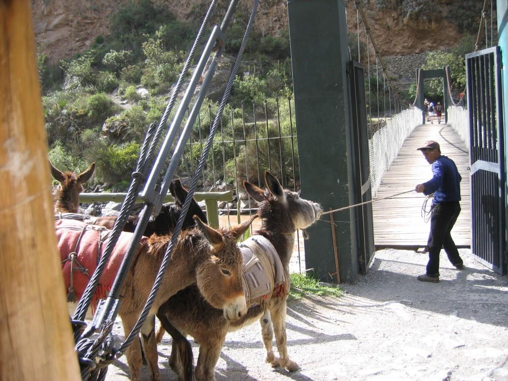Peru, Part 2.  Inca Trail!