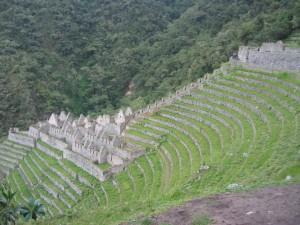 Wiñay Wayna Ruins